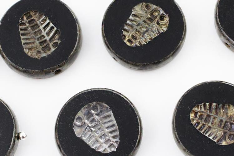 Flat Coin Trilobite Fossil Marine Window Table Cut Czech Beads