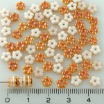 Forget-Me-Not Flower Czech Small Flat Beads - Apricot Orange White Half Luster - 5mm